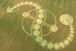 Dragon Cosmic Serpent Crop Circle West Woodhay Down Wiltshire 29th July 2011