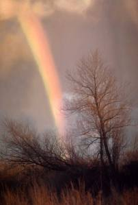 tornadorainbow