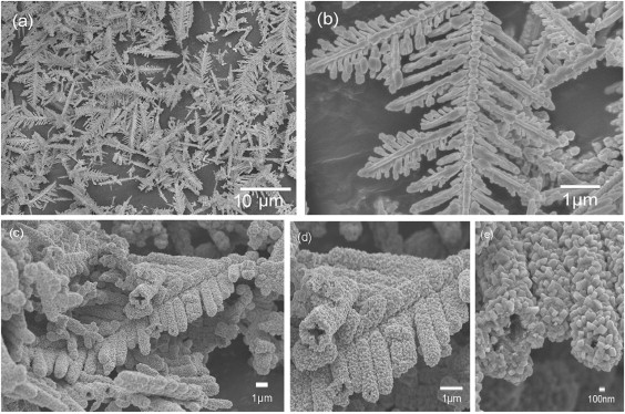 Lithium Ion Battery >> The Dendrite Reveals its Flight | Dark Matters a Lot