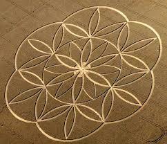 flower of life 1