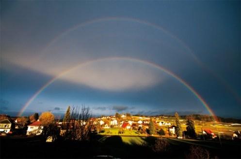 rainbow cusp