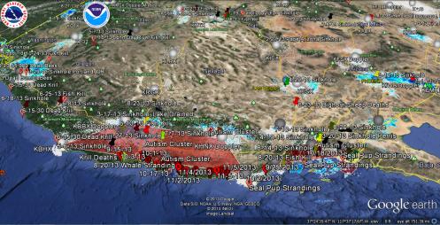 11-10-13 LA San Diego