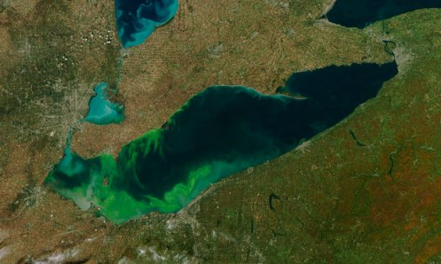 algae-erie-2011-toxic-bloom (1)