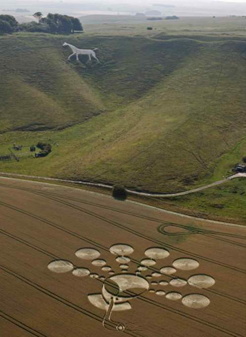Alien-smoking-pipe-Crop-circle