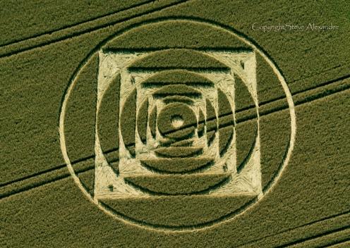 70_Normanton_Down_nr_Stonehenge_Wiltshire_01_08_2013_Wheat_OH