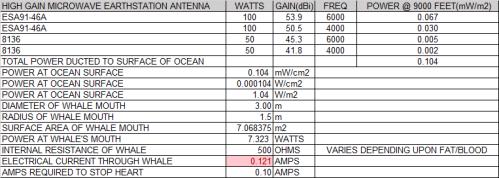 whale antennas