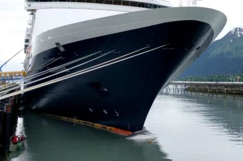 cruise_ship_dead_whale_128052385