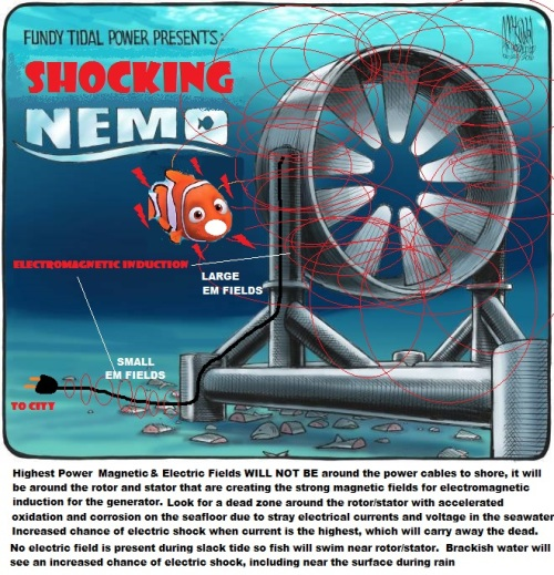 shocking-nemo